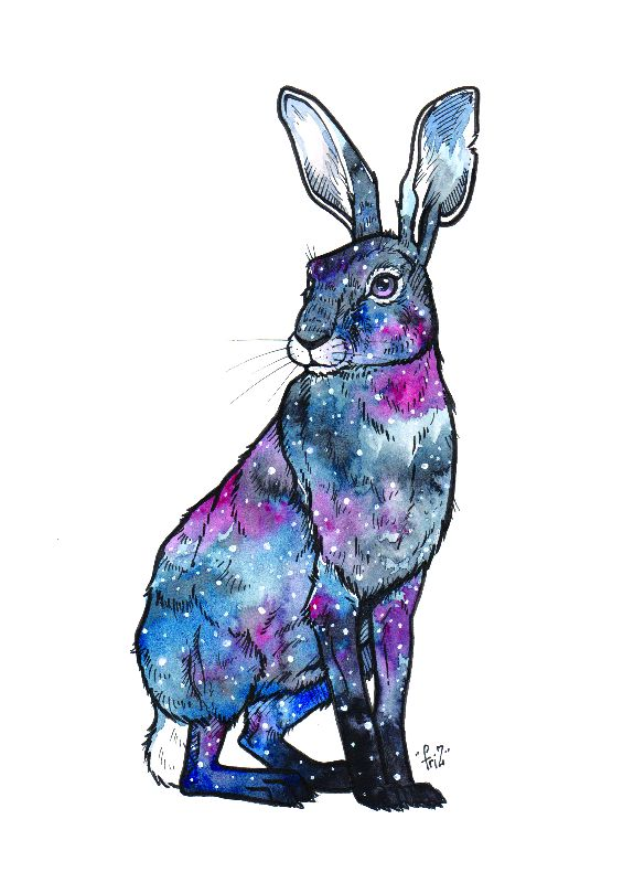 Galaxy Paws  Hare
