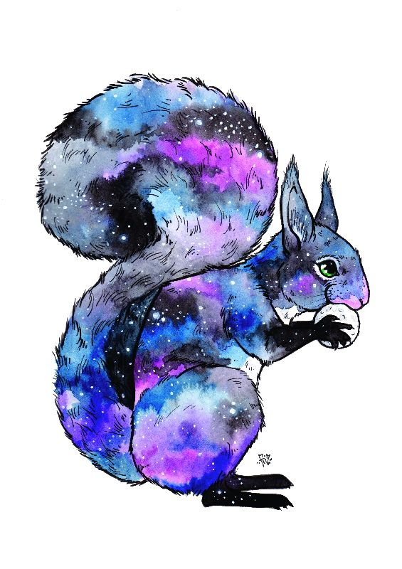 Galaxy Paws Squirrel