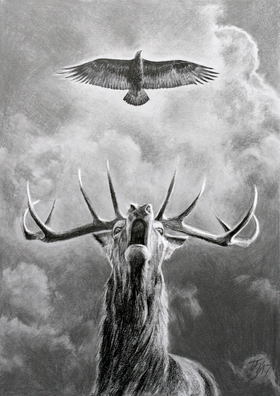 Stag and Eagle