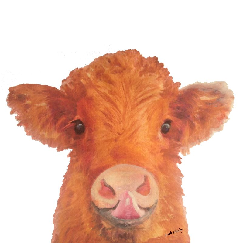 Baby brwon cow