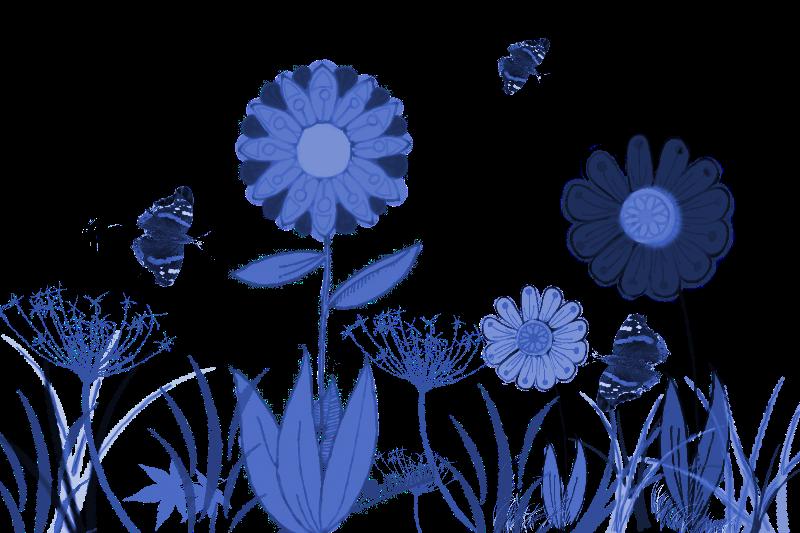 Blue summer meadow