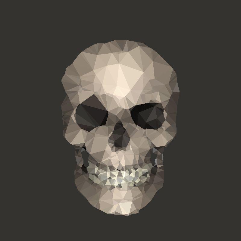 Skull polygons