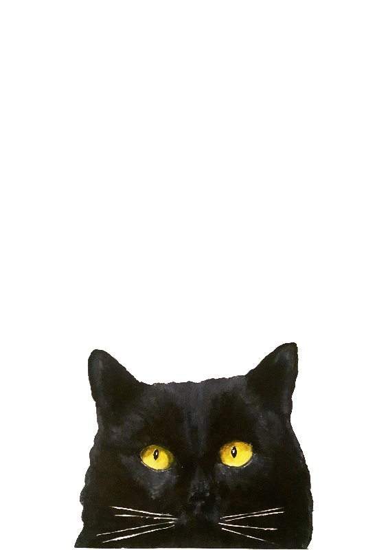 Lucky-Black-Cat
