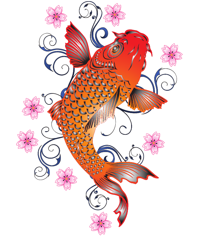 Asia Orange Koi Fish