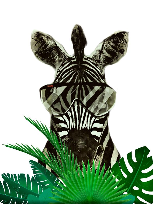 Hipster Zebra Jungle