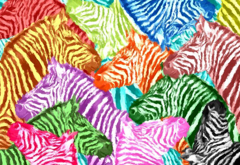 Pattern Africa Zebra