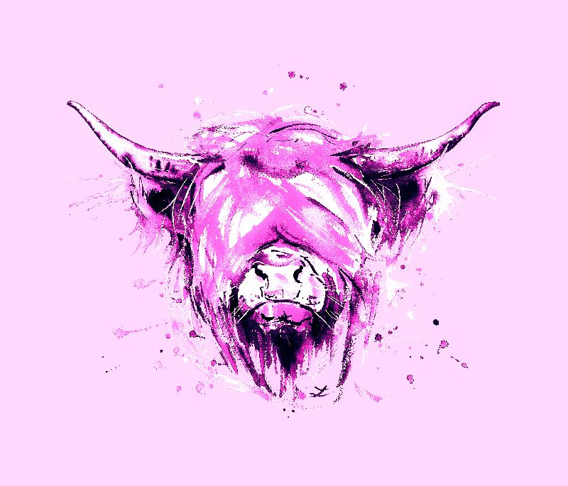 Highland Cow in purple