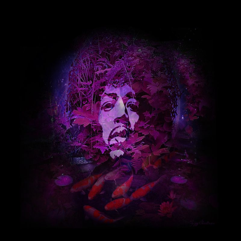 Purple Hazed 2016