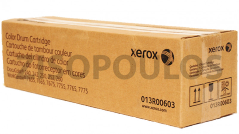 XEROX DRUM 013R00603 COLOR