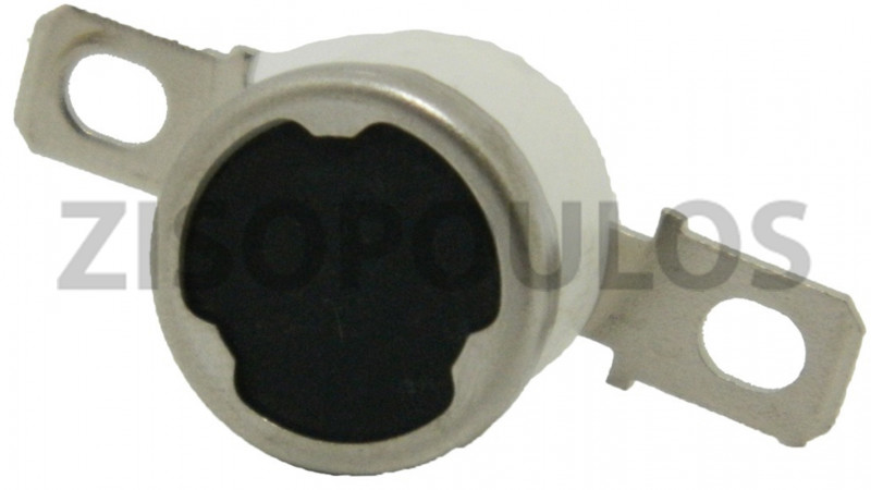 RICOH THERMOSTAT AW110027