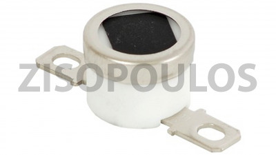 RICOH  THERMOSTAT 165 AW110079