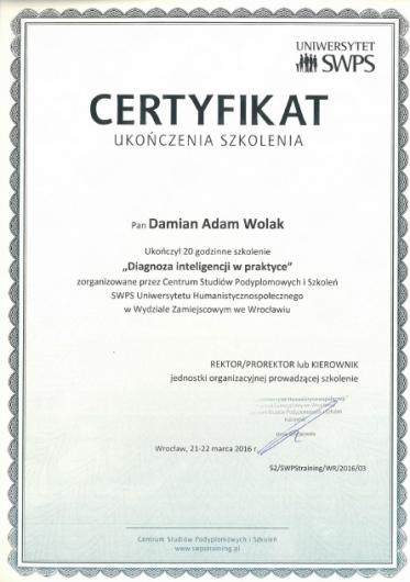 Damian Wolak - Galeria zdjęć