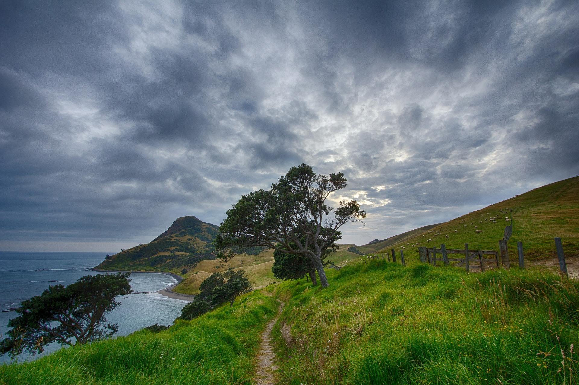 Nieuw zeeland wandel pad