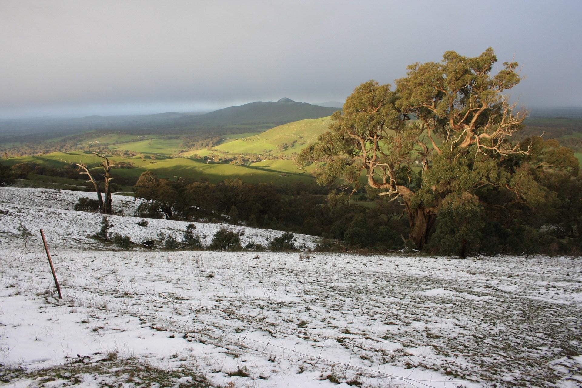 One Tree Hill Nieuw Zeeland