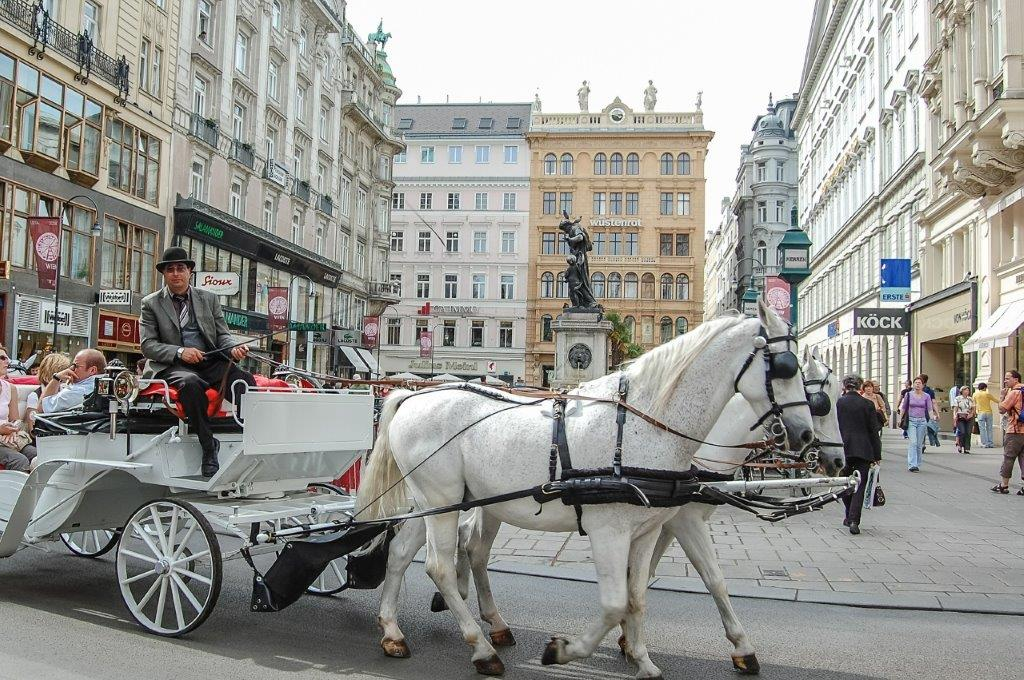 Paard en wagen Wenen Oostenrijk