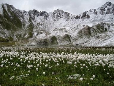 Bergen met sneeuw Tignes Frankrijk