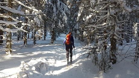Feldberg Duitsland langlaufen in de sneeuw