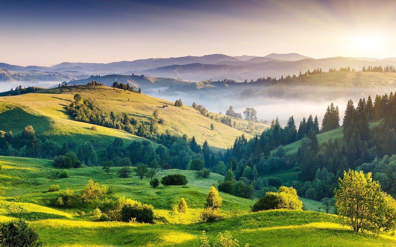 Blick auf den Wald und die Hügel Indiens