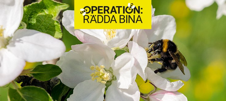 Operation: Rädda bina - Ge en gåva