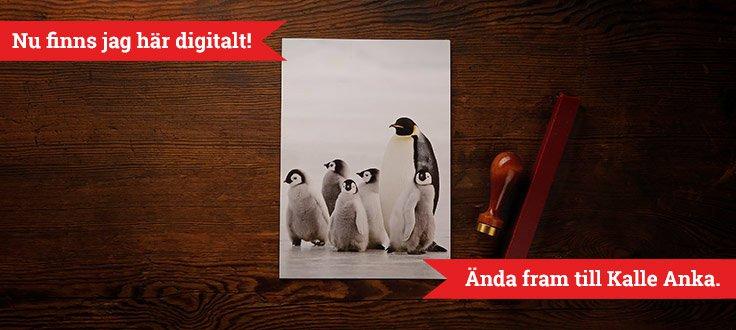 header_julgavokort_pingvin_digi.jpg